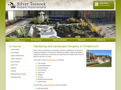 Web design for Silver Tussock
